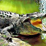 10 caracteristicas de los cocodrilos