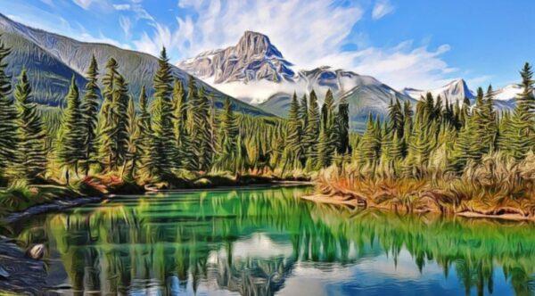 espacio geográfico con pinos montañas y lago
