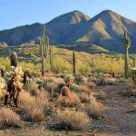 paisaje natural en aridoamérica